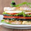 eggplant tomato toasted sandwiches