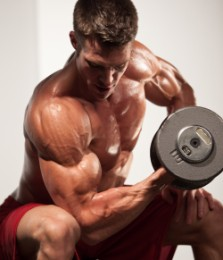 strength and muscle mass exercise program reviews