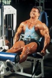 Quadriceps/Biceps