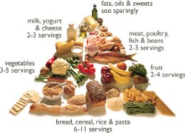 Understanding the Food Pyramid and the Health Benefits of ...