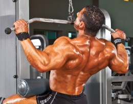 seated back pulldowns