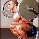push push calves quadriceps
